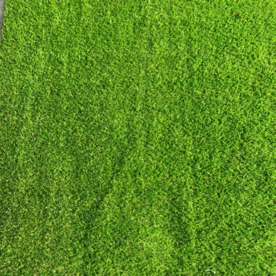 Astro/Artificial Turf (Artificial Grass) 30m x 2 wide